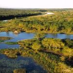 Botswana Okavango Delta Safari